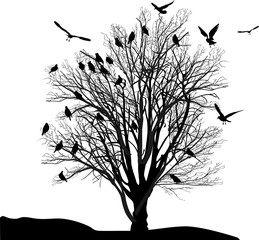 birds and tree in late autumn isolated on white