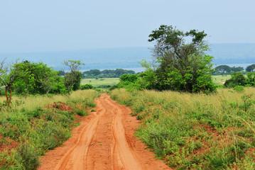 Fototapete - Murchison Falls national park, Uganda