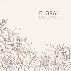 Floral square backdrop with gorgeous blooming rose flowers, leaves and inflorescences growing from bottom edge hand drawn with contour lines on light background. Botanical vector illustration.