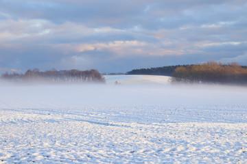 Insel Rügen, Winterlandschaft, Nebel