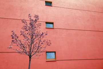 Huge red wall on modern building with two windows and lines. Reflections in windows. Copy space