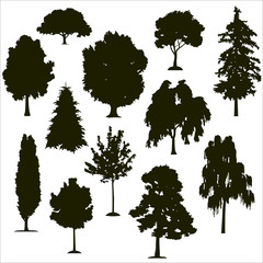 Vector silhouettes of various trees on a white background