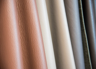 Color palette sample of leather material.