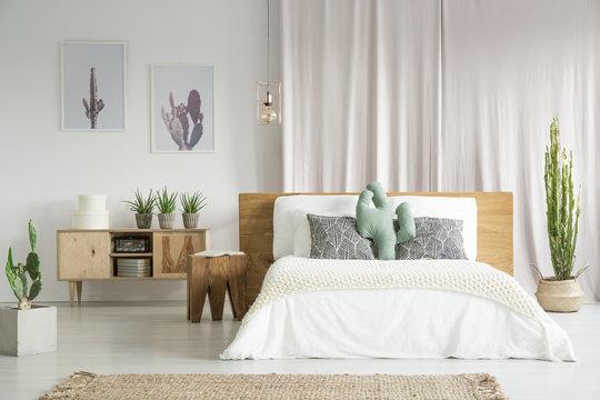 Cactuses in spacious bedroom