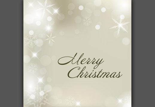 Metallic Snowflake Christmas Banner 4