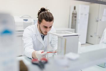 Young male engineering student doing an experiment in genetics laboratory by himself in laboratory