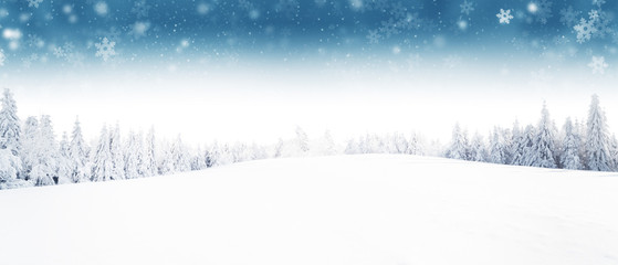 Wall Mural - Winter forest and meadow landscape with snow flakes.