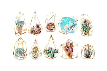 Hand drawn vector abstract graphic succulent,cactus and plants in golden terrariums collection set colorful artistic brush painted isolated on white background.Unique unusual hipster trendy design
