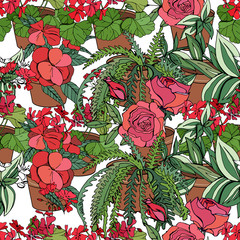 Seamless pattern with red flowers grown indoors. Endless pattern with typical home plants for your design