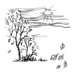 Vector image. Autumn landscape with a trees and faling leaves