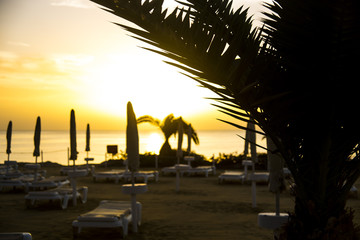 Dawn of the sun on the beach by the sea among palm trees