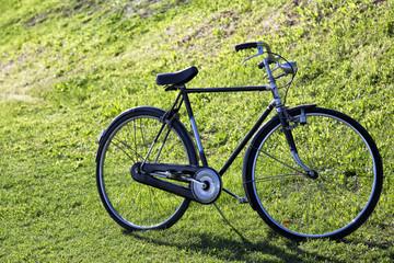 Bicicletta vintage su un prato