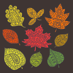 Hand drawn leafes doodle Vector. Beautiful vector design.