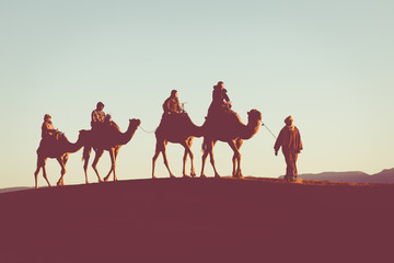 Foto auf Leinwand Durre Camel caravan with people going through the sand dunes in the Sahara Desert. Morocco, Africa.
