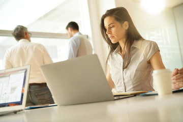 Businesswoman in office working on laptop computer, team in background