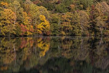 Kagami pond at Nagano prefecture in autumn