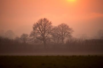 Abendnebel bei Sonnenuntergang - Deutschland