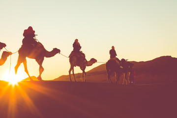 Camel caravan with people going through the sand dunes in the Sahara Desert. Morocco, Africa.