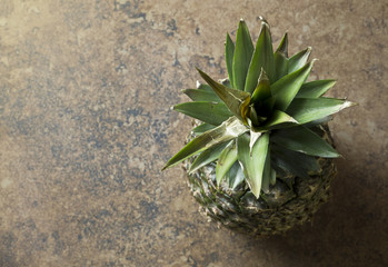 Overhead view of a pineapple on a stone surface, with room for copy space.