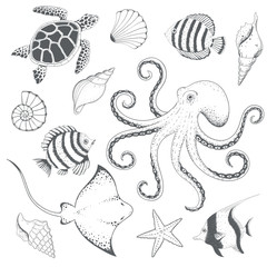 Ocean hand drawn set. Vector illustration.