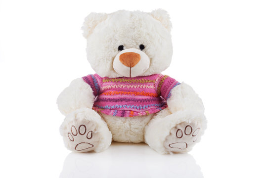 White teddy bear in colorful t-shirt