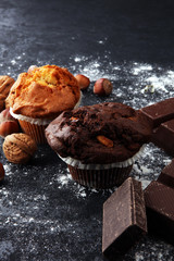 Chocolate muffin and nut muffin, homemade bakery on dark background