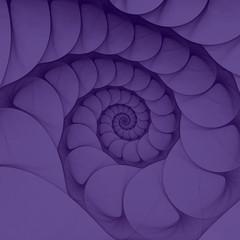 Ultraviolet Nautilus Sea Shell Spiral. Ultra Violet - Modny kolor roku 2018