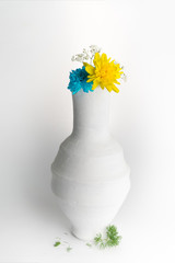 Still life composition of yellow and blue flowers in white pottery vase on white background