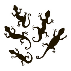Lizards silhouette vectort. Stock vector template, easy to use.