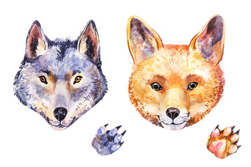 Cute watercolor fox and wolf. Hand-drawn animal's potrait