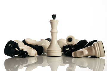 King and knight of chess board isolated on white background