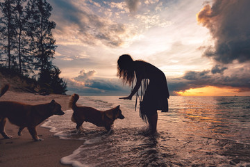 woman playing with dogs on the beach at sunset