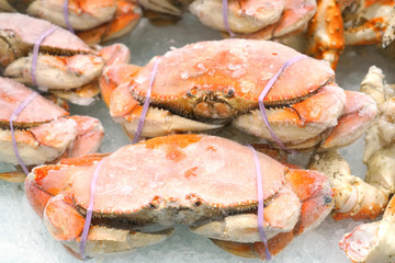 Close up on steamed crab frozen on the ice