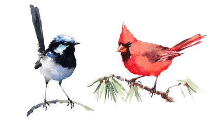 Cardinal and Fairy Wren Two Birds Watercolor Hand Painted Illustration Set isolated on white background
