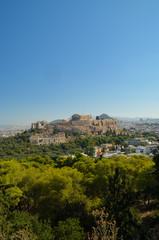 Fototapete - Parthenon acropolis among pine trees  Athens Greece