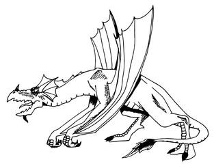 disegno di un drago da colorare