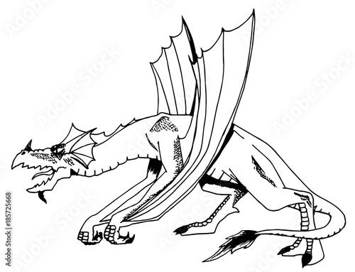 Disegno Di Un Drago Da Colorare Immagini E Fotografie Royalty Free