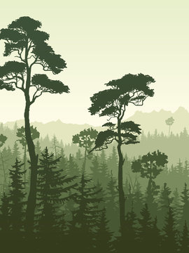 Vertical illustration of green forest mountains.