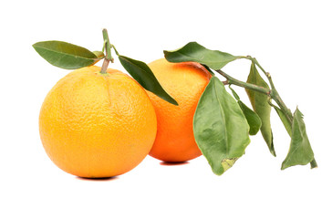 Two orange fruit with leaves