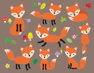 Cute fox vector illustration in various poses with leaves and flower elements.