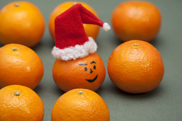 fruit mandarin santa hat in a row, copy space