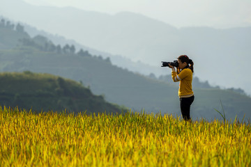 back side of photographer taking photo over the Rice fields on terraced of Mu Cang Chai District, YenBai province, Northwest Vietnam