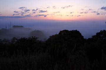 早朝の野見金公園