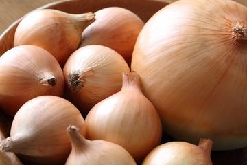 タマネギ big and small onion