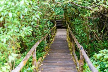 Ang Ka Luang Nature Trail