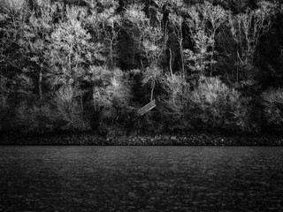 Escalier perdu dans un rivage de lac