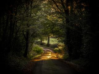 Route de terre au coucher du soleil