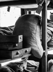 Sacs de grain et tiroirs d'un entrepôt du XVIIIe NB