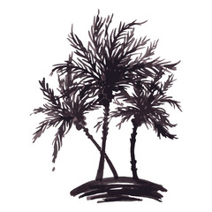 Monochrome three tropical palm tree sea ocean beach hand drawn sketch vector