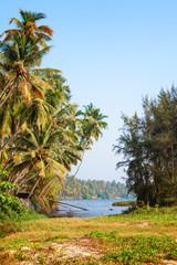 The Backwaters of Kerala near Varkala